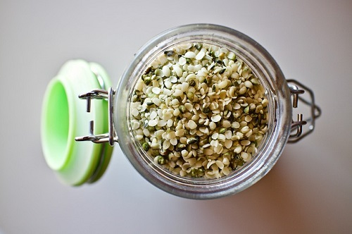 Hemp seeds for fast weight loss food list